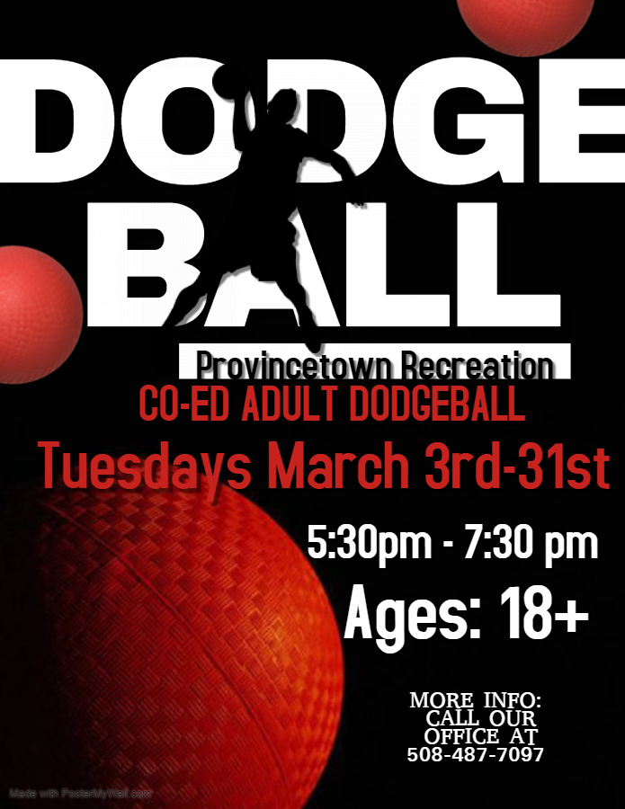 Copy of Dodgeball Championship Flyer Template - Made with PosterMyWall
