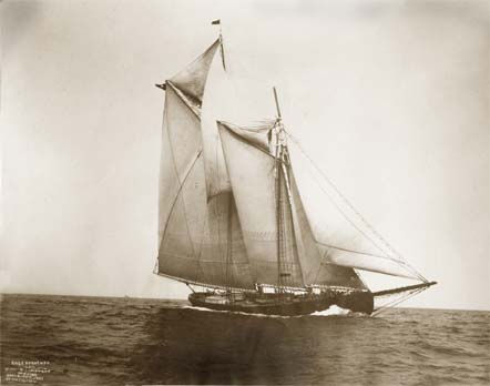 schooner Rose Dorothea at sea.jpg